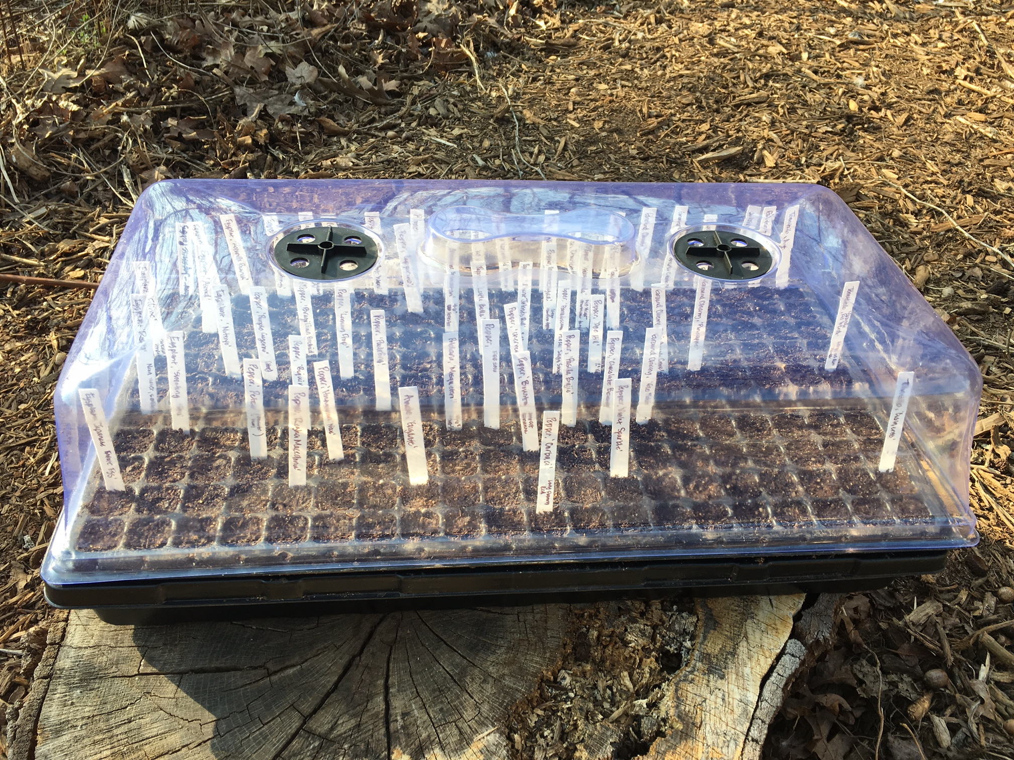 A 72 cell tray full of newly planted and labeled summer seeds. The vented humidity dome is helpful for maintaining high moisture levels inside up until your seeds germinate, but you'll want to remove it after germination to prevent fungal diseases like damping off.