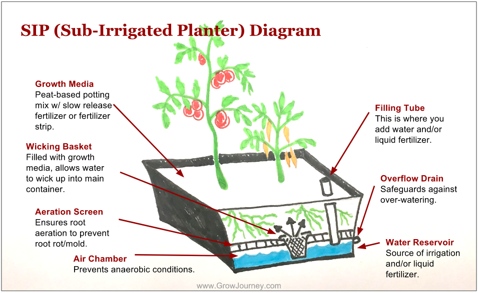 Sub-irrigated planter diagram.
