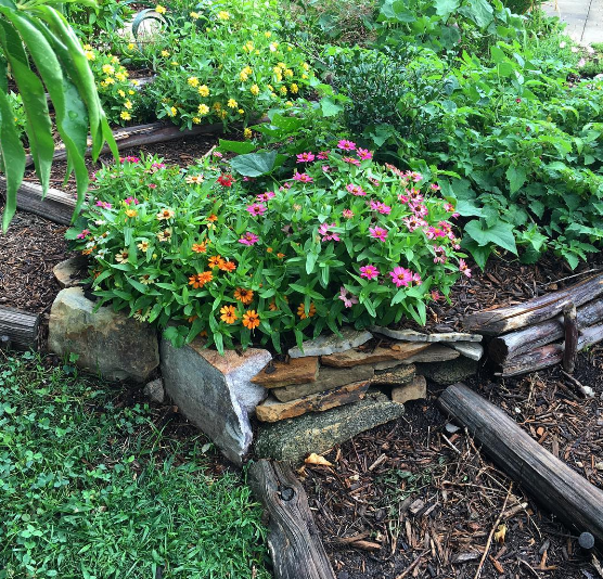 Aaron and Susan (GrowJourney's cofounders) use a lot of rock-outlined beds and wood steps throughout their garden to give it a consistent look and feel throughout.
