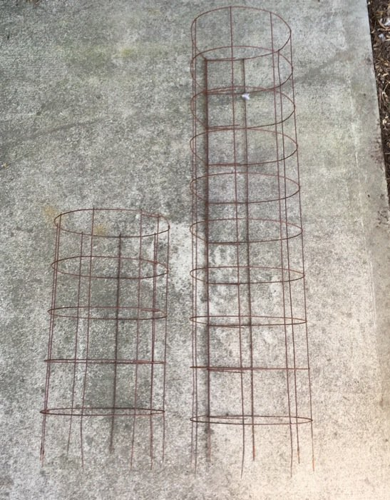 Finished cages made from concrete reinforcing wire. The cage on the left will be used for smaller plants like peppers, eggplants or determinate tomatoes. The cage on the right will be used for larger plants like indeterminate tomatoes and cucumbers.